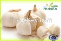 Cheap High Quality Fresh Garlic from Shandong (China) (Wholesale)