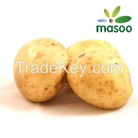Cheap High Quality Fresh Potato from Shandong (China) (Wholesale)