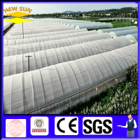 Greenhouse Anti Insect Screen