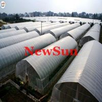 Polythene Insect Screen