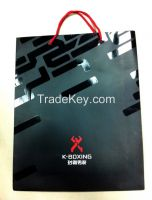 Shopping Paper Bag (2015 New Luxury Bags for Cloth)