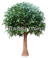 artificial ficus tree, banyan tree for outdoor decoration