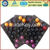 fruit  PP tray
