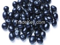 2014 new crop big black bean / black soya bean