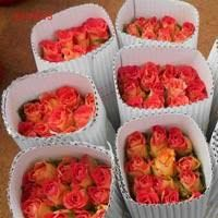 Fresh Cut Jasmine Flowers, Amaranth flowers Carnation flowers ,Red Roses, Lilies Lotus Special Orchids