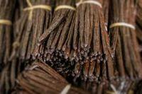 Vanilla Beans   Indian