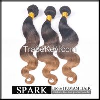 ombre virgin human hair