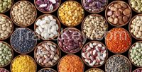 Quality Beans, Yellow Gram, Pigeon Peas, Mung Beans, Chick Peas, Lentils, Kidney Beans, Coffee Beans, Soya Beans