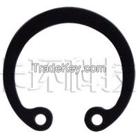 retaining ring for bores