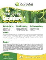 Peat soil for cucumbers