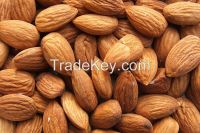 Raw Almond Nuts & Kernels, Hazelnuts