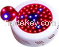 Top quality strawberry seedlings SMD led grow light alibaba ru grow lights