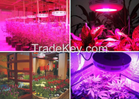 Hot Promotion Flowers Seeds For Sale 660nm Red Led For Plant Growing Light 10W LED Grow Bulb With E27