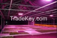 Alibaba Express Factory Promotion Led Grow Lights For Agriculture Plants UFO 50W LED Grow Light