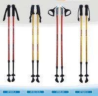 2-section nordic walking stick