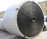 High Temperature Resistant Conveyor Belt (Mouded edge, Cut Edge)
