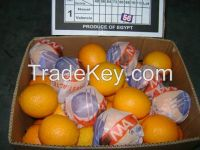 Fresh Egyptian Orange for SaLe