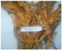 Premium Quality - Flue Cured Virginia (FCV) Tobacco - Grade: NDM (Non-Descript Middle)