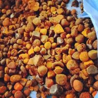 Grade A Cheap Price Cow Gall Stones / Ox Gallstones for Sale