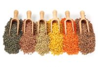 Pure organic lentils, Green chipped brownish yellow