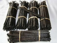 Best Quality Madagascar Premium Dried Black Vanilla Beans On SALES