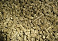 Sunflower Seed Meal/ Fish Meal/ Bone Meal/ Soybean Meal/ Corn Gluten Meal All Available