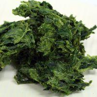 seaweed ulva lactuca Dried