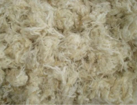 Dirty Wool and Raw Wool from Chile