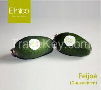 Feijoa ( Guavasteen)