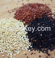Organic andean grains