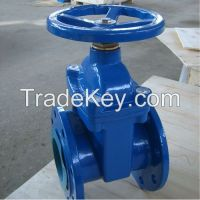 DIN3352 Cast Iron Rising Stem Gate Valve