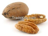 PECAN (peeled walnut, pecan, nuts)