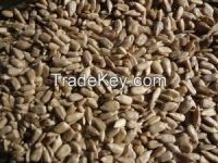 Hulled sunflower kernels - Bakery and confectionary grade