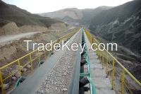 Conveyor belts, V-belts or Transmission belts