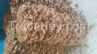 Organic Flowering tea Chrysanthemum