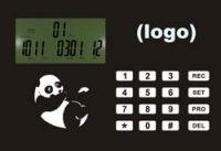 Intruder LCD alarm system