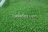 High quality green mung beans specification