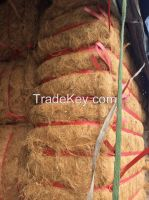 High quality coconut fiber from Vietnam