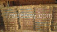 High quality coconut fiber