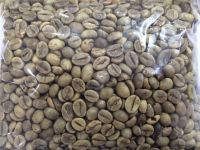 Robusta Coffee Bean for exporting