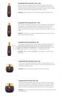 Hwang Hoo Red Ginseng Skincare Set