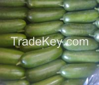 Fresh vegetables from