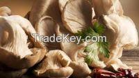 frogen mushroom