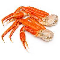 Sea Crab, shrimps
