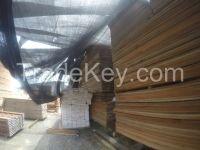 Exotic Wood (COCO BOLO