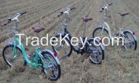 Folding Bike low step 20 inch 7 speed Hi-ten Steel frames and forks EN14764