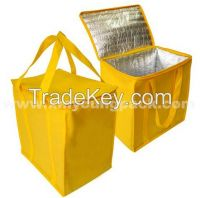 Large Non-Woven Thermal Insulated Cooler Bag for Frozen Food