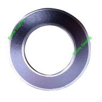 Tanged Metal Reinforced Graphite Gasket