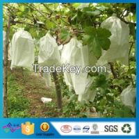 Agriculture Biodegradable Non Woven Protect Fruit Bag