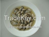 canned smoked oyster in oil